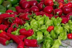 Rote und grüne Pfeffer Stockfotos