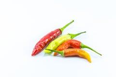 Rote und grüne Pfeffer des scharfen Paprikas Lizenzfreies Stockfoto