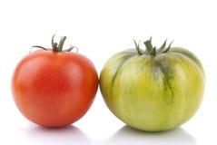 Rote und grüne Tomaten Stockfotografie