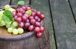 Rote und grüne Trauben auf ein altes Wein-Fass Stockbilder