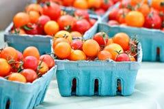 Rote und orange Tomaten Lizenzfreies Stockfoto