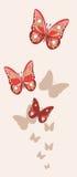 Rote und rosa Fischnetzschmetterlinge mit Schatten auf dem Hintergrund Lizenzfreies Stockbild