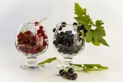 Rote und Schwarze Johannisbeere in einem Glas lizenzfreie stockfotos