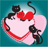 Rote und schwarze Katzen Lizenzfreies Stockbild