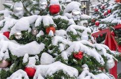Rote und weiße Bälle auf einem schneebedeckten Weihnachtsbaum Dekorationen neues Jahr, Weihnachten stockfotos