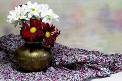 Rote und weiße Gänseblümchen in einem kupfernen Vase Stockbild