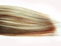 Rote und weiße mehrfarbige Haarwelle Stockfoto