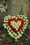 Rote und weiße Sympathie blüht nahe einem Baum Lizenzfreies Stockbild
