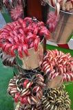 Rote und weiße Zuckerstange Lizenzfreies Stockbild