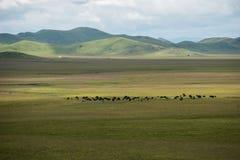 Rote ursprüngliche Landschaft Sichuans ABA Lizenzfreies Stockfoto