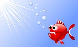 Rote verärgerte Fische der Karikatur im Wasser mit Blasen und Strahlen des Lichtes Stockfotos