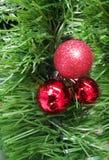 Rote Verzierungen für Weihnachtszeit auf Baum Stockfotos