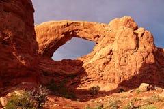 Rote Wüste am Sonnenuntergang Lizenzfreie Stockfotos