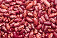 Rote weiße Bohnen Lizenzfreie Stockfotos