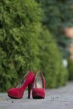Rote weibliche Schuhe auf einem cobbled Fußweg im Park Stockfotografie