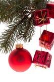 Rote Weihnachtsbaumkugel mit Tanne Lizenzfreie Stockfotografie