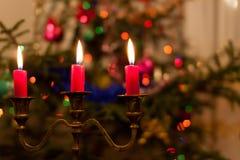 Rote Weihnachtskerzen stockbilder