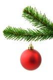Rote Weihnachtskugel auf einem Baum Stockfotografie