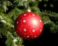 Rote Weihnachtskugel auf Tannenbaum Stockfoto