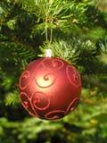 Rote Weihnachtskugel, die an einem Weihnachtsbaum hängt Lizenzfreie Stockfotografie