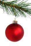 Rote Weihnachtskugel, die vom Zweig hängt Lizenzfreies Stockfoto