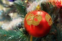 Rote Weihnachtskugel, die am Zweig hängt Lizenzfreie Stockfotos