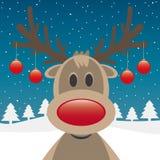 Rote Wekzeugspritzen- und Weihnachtskugeln des Rens Lizenzfreie Stockbilder