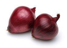 Rote Zwiebel stockbild