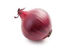 Rote Zwiebel auf Weiß Stockbilder