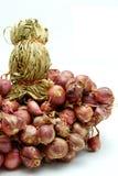 Rote Zwiebel auf weißem Hintergrund Stockfotos