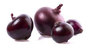 Rote Zwiebel in der Nahaufnahme stockbild