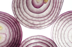 Rote Zwiebel in einem Schnittmakro Stockfotos