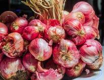 Rote Zwiebel im Naturhintergrund Lizenzfreie Stockbilder