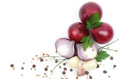 Rote Zwiebel mit dem Knoblauch und Gewürzen getrennt Stockbild