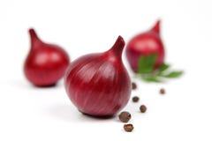 Rote Zwiebel und frische Petersilie Lizenzfreies Stockfoto