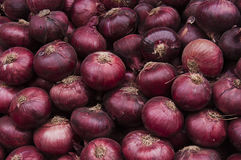 Rote Zwiebelen-Getreide-Beschaffenheit Lizenzfreie Stockbilder