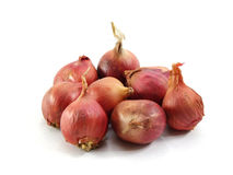 Rote Zwiebeln auf weißem Hintergrund Lizenzfreies Stockfoto