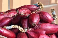 Rote Zwiebeln, eine Spezialität von Tropea, Kalabrien lizenzfreie stockbilder