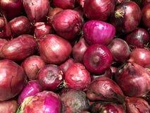 Rote Zwiebeln gemüse Fragment von einem Obst- und Gemüse Shop Lizenzfreie Stockfotos
