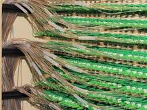 Roteamento dos conectores e da fibra da fibra ótica na parte de trás de um armário imagem de stock royalty free