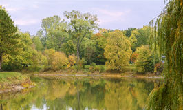 The Rotehornpark, Water Landscape, Autumn Stock Image