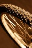 Rotella della bici di montagna fotografia stock