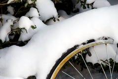 Rotella di bicicletta coperta in neve Fotografia Stock Libera da Diritti