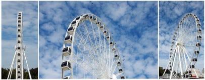 Rotella di Brisbane Ferris fotografie stock libere da diritti
