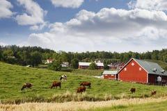 Roter alter Bauernhof in einer ländlichen Landschaft Lizenzfreies Stockbild