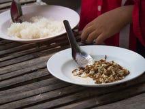 Roter Ant Egg Food Lizenzfreies Stockbild