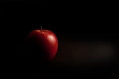 Roter Apfel Stockbilder