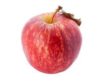 Roter Apfel. Lizenzfreie Stockfotografie