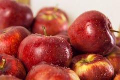 Roter Apfel Stockfotografie