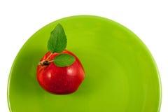 Roter Apfel auf einer grünen Platte Lizenzfreie Stockbilder